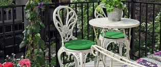 5 plante ideale pentru balcon și terasă