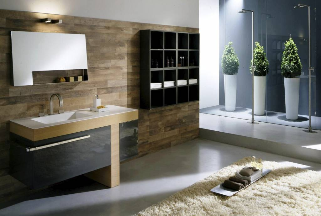 Stiluri de amenaj ri b i concept casa for Amenajari bai