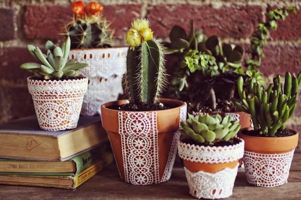 ghivece pentru plante (1)