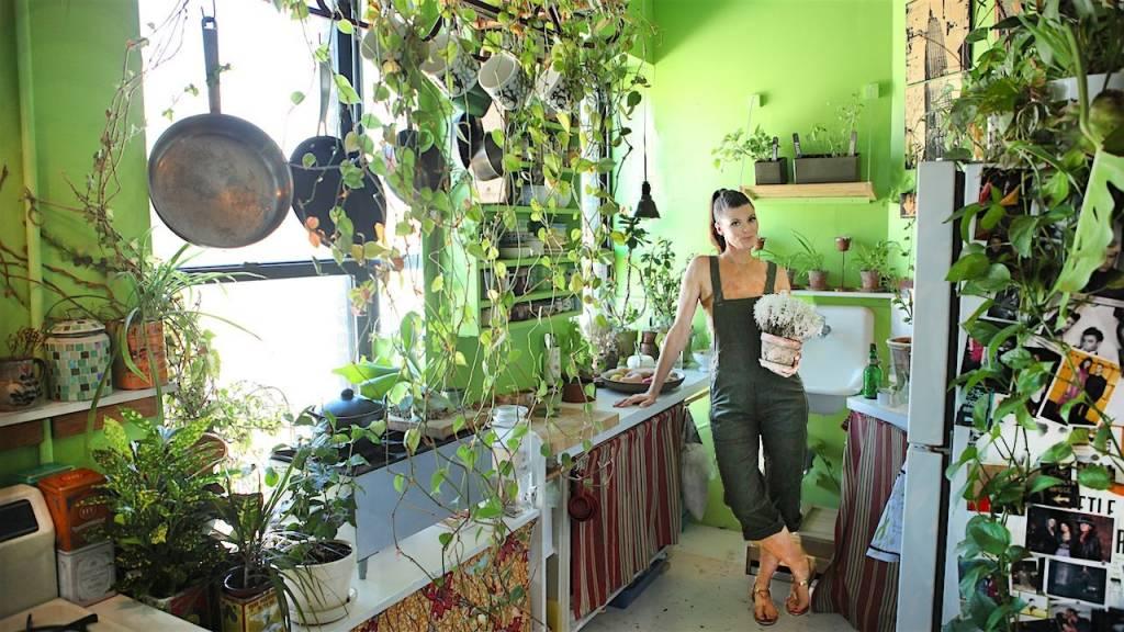 jungla apartament 1