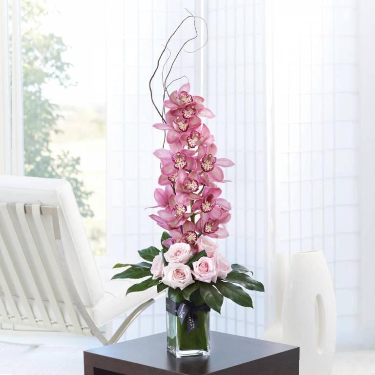Orhidee (5)