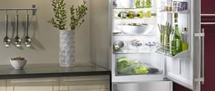 8 lucruri pe care nu le știi despre funcționarea combinei frigorifice
