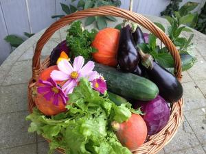 Vrei să mănânci cât mai curat Iată de unde poți face cumpărături bio